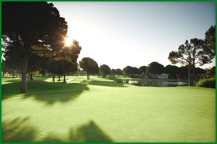 Golf Club Nobilis