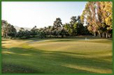 Guadalmina golf club