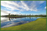 Royal Palm Golf Club